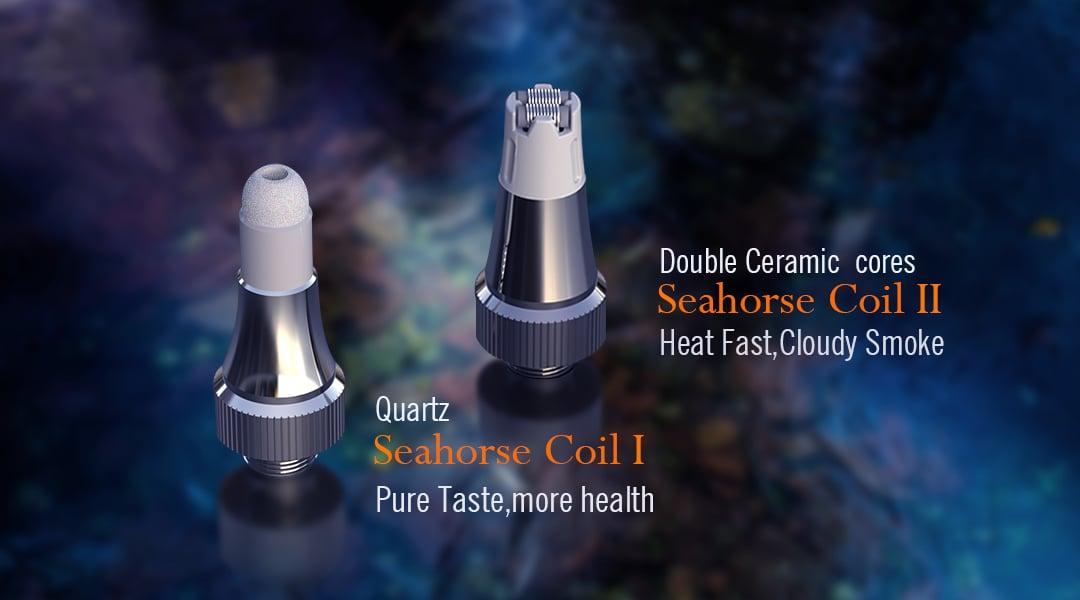 Seahorse Coils